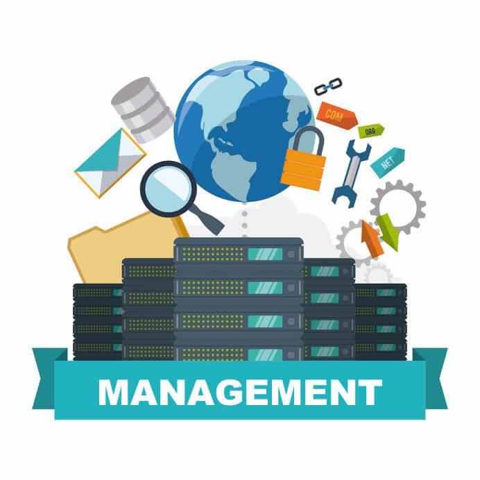 Website Management Packages